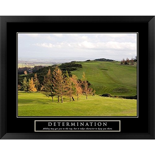 Metaverse Framed Art (Metaverse Handmade 'Determination-Golf' Framed Art)