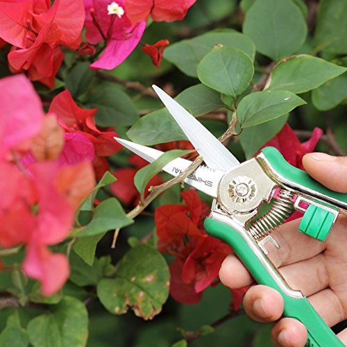 SHINE HAI Soft-touch Micro-Tip Pruning Snip 6'' Gardening Hand Pruning Shear Trimming Scissors with Stainless Steel