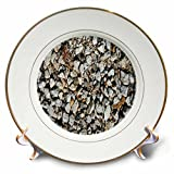 3dRose TDSwhite – Rock Photos - Pebbles Small Rocks - 8 inch Porcelain Plate (cp_281905_1)