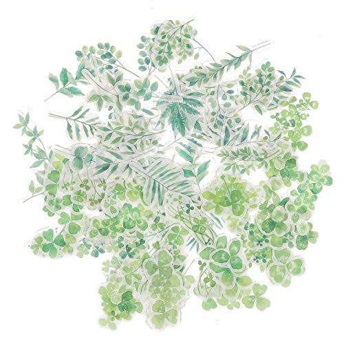 Style Scrapbooking - Molshine 80pcs Cute Green Plants Stickers Set, Green Leaves and Clover Style Stickers Decorative Sticker for Scrapbooking, Calendars, Arts, Kids DIY Crafts, Album, Bullet Journals