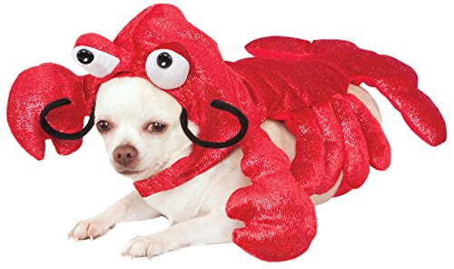 Rubies Costume Mr. Claws Lobster Pet Costume, Small