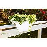Greenbo XL-Vaso in plastica bianca per balconi e ringhiere Disponibile in altri colori, non richiede fissaggio