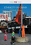 Ethnicity in China: A Critical Introduction (China Today)