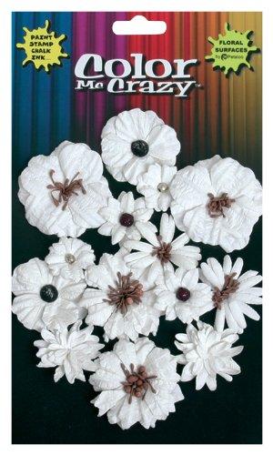 Petaloo Color Me Crazy - Fiori decorativi, collezione Darjeeling, misura: Media/mini 1533-000