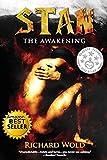 Bargain eBook - Stan the Awakening