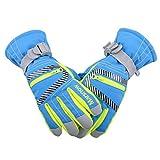 Triwonder Waterproof Ski Snowboard Gloves Thermal Warm Winter Snow Skiing Gloves for Men, Women and Kids