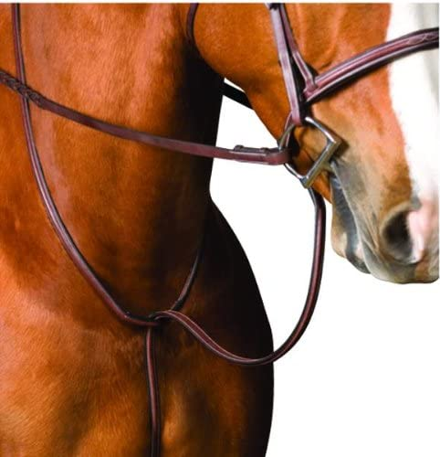 Collegiate Raised Standing Martingale ブラウン フル