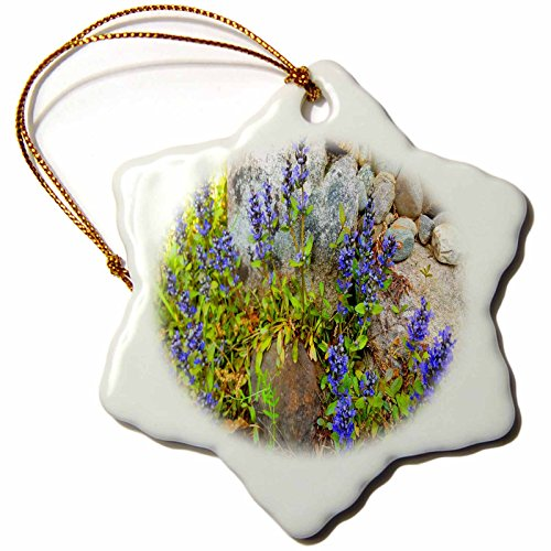 3dRose TDSwhite – Rock Photos - Purple Flowers Against Rocks - 3 inch Snowflake Porcelain Ornament (orn_281910_1) by 3dRose