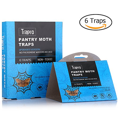 pantry-moth-traps-with-pre-baited-safe-pheromone-attractant-odor-free-insecticide-free-and-non-toxic