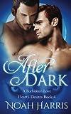 After Dark: A Forbidden Love (Heart's Desire) (Volume 4)