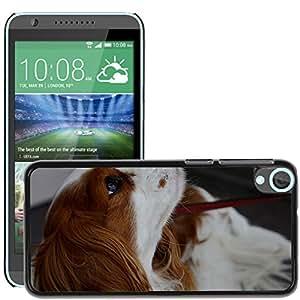 GoGoMobile Slim Protector Hard Shell Cover Case // M00118505 Dog Hybrid Funny Pet Animal Fur // HTC Desire 820