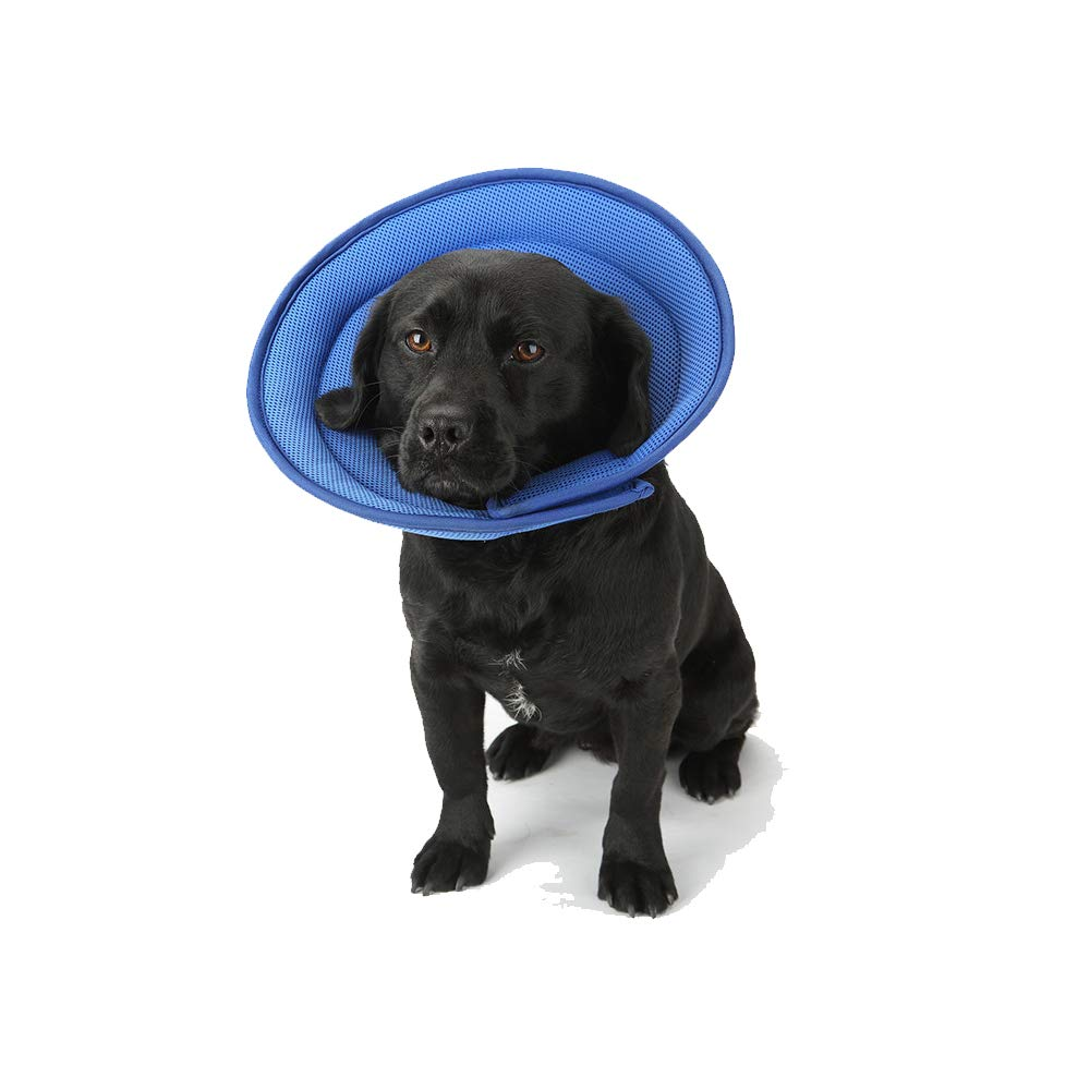 bluee Large bluee Large Pet Collar Cone pet Collars Dogs Post Surgery Stress-Free Recovery Collar Elizabeth Circle Mesh Dog Predective Collar Safe Breathable Pet Beauty Breathable Soft Edge,bluee,L