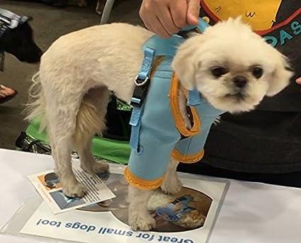 Amazon Com Dog Grooming Harness Dog Restraint Dog Grooming