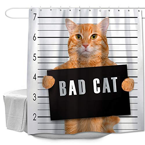 Colorful Cat (Colorful Star Bad Cat Funny Shower Curtain Made of 100% Polyester Fabric Waterproof Durable Rust Proof Grommets with Hooks 72