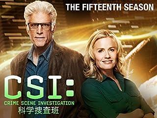 CSI:科学捜査班 シーズン15 ザ・ファイナル