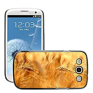 Super Stellar Slim PC Hard Case Cover Skin Armor Shell Protection // M00053166 golden wheat aero macro // Samsung Galaxy S3 i9300