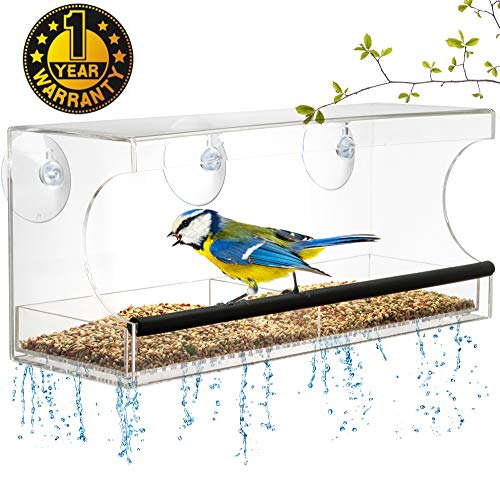 Window BIRD FEEDER, Extra Strong Suction Cups, Removable Seed Tray with Drainage Holes to keep seeds dry, +3 Extra suction cups, Acrylic Clear Design to Enjoy Bird Watching in the Comfort of your Home ()