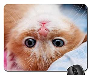 Adorable Kitty Mouse Pad, Mousepad (Cats Mouse Pad)