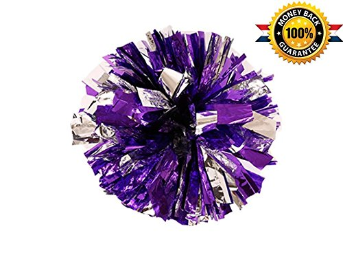 Pack of 2 Metallic Foil & Plastic Ring Pom Poms (Purple with Silver)]()