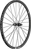 DT Swiss XRC 1200 Spline 25 Rear Wheel: 29'', 12x142mm, Centerlock Disc