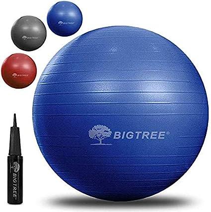 BIGTREE Balón de Ejercicio Anti-Burst para Yoga, Equilibrio ...