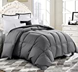 ROSECOSE Luxurious Goose Down Comforter Duvet Insert All Seasons Lightweight Hypo-allergenic 700 Thread Count 750+ Fill Power 100% Cotton Shell Down Proof With Tabs Gray (Queen, Gray)