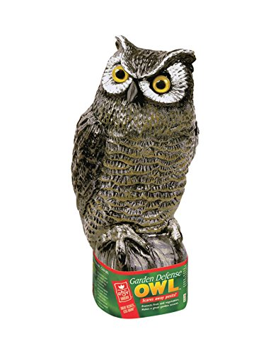Easy Gardner 8001 Realistic Great Horned Owl Decoy Garden Pest Deterrent ()
