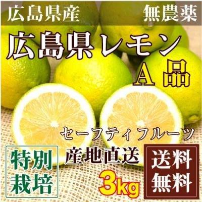 広島県レモンA品・農薬使用無 3kg