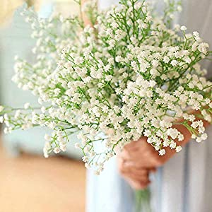 LYLYFAN 12 Pcs Babys Breath Artificial Flowers, Gypsophila Real Touch Flowers for Wedding Party Home Garden Decoration 5