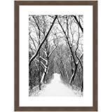 eFrame Fine Art | Avenue Of Trees In The Snow by Robert Evans 16'' X 24'' Framed and Unframed Wall Art for Wall Decor or Home Decor (Black, Brown, White Frame or No Frame)