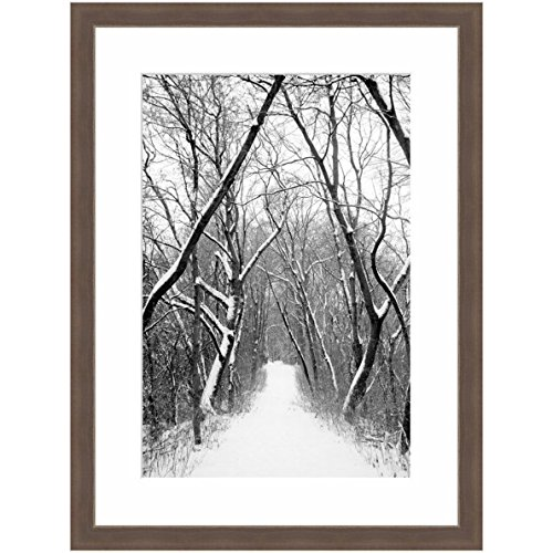 eFrame Fine Art | Avenue Of Trees In The Snow by Robert Evans 16'' X 24'' Framed and Unframed Wall Art for Wall Decor or Home Decor (Black, Brown, White Frame or No Frame) by eFrame