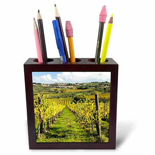 3dRose Italy, Tuscany Vines and Olive Groves of The Village of Panzano Tile Pen Holder, 5
