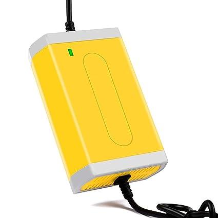Onlyonehere Cargador de batería de Coche de Motocicleta, Cargador ...