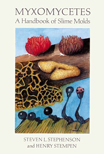 Myxomycetes: A Handbook of Slime Molds by Steven L. Stephenson (2000-02-01)