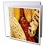 3dRose TDSwhite – Farm and Food - Food Corn Ears Multicolored Healthy - 12 Greeting Cards with Envelopes (gc_285126_2)