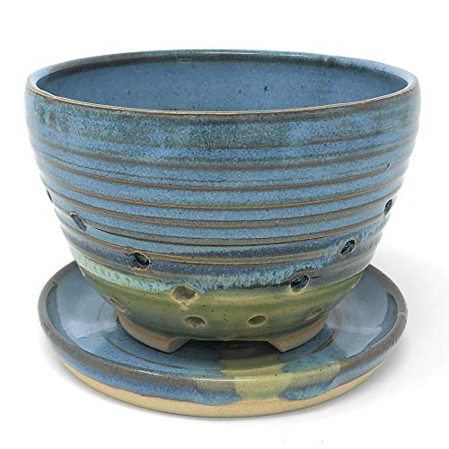 Pottery Bowl Studio - Mosquito Mud Pottery Berry Bowl with Plate, Blue
