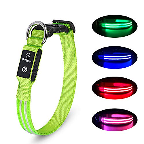 LED Dog Collar 100%
