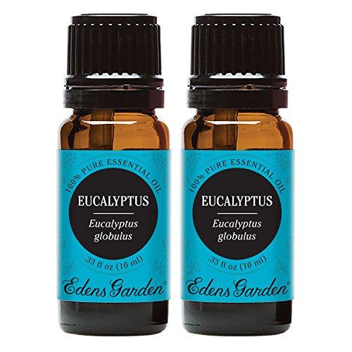 Edens Garden Eucalyptus- Globulus Essential Oil, 100% Pure Therapeutic Grade (Highest Quality Aromatherapy Oils), 10 ml Value Pack