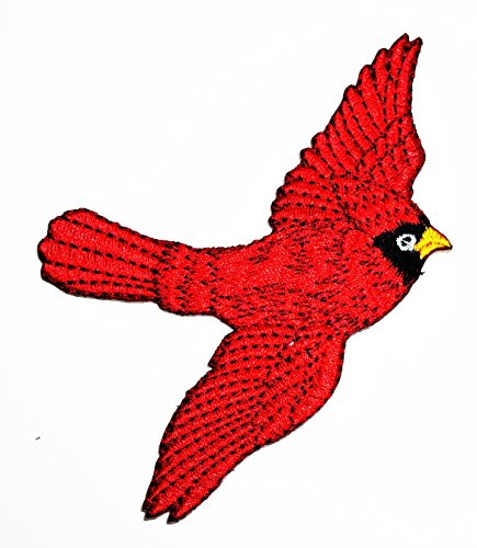 HHO Cardinal Red Bird Applique Embroidered patch Parrot Red Bird Embroidered cartoon Patch Embroidered DIY Patches, Cute Applique Sew Iron on Kids Craft Patch for Bags Jackets Jeans (Parrot Iron On Transfers)