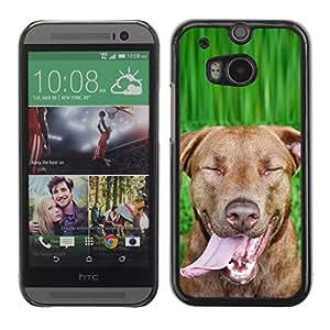 Vortex Accessory Carcasa Protectora Para HTC ONE ( M8 ) - Chesapeake Rhodesian Ridgeback Brown Dog -