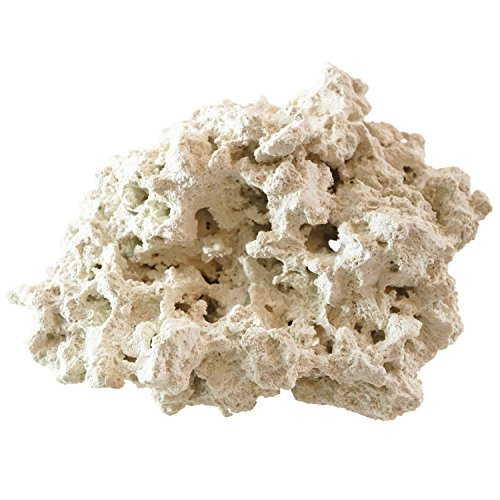 ARC Reef Dry Base Rock For Saltwater Aquariums, 10 lbs. by ARC Reef