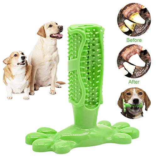 OKA Dog Toothbrush Stick-2019 Upgraded Dog Toothbrush Chew Toys, Non-Toxic Natural Rubber Dog Toothbrush kit for Dogs…