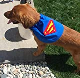 X-Small Dog Superman Super Dog Cape Costume