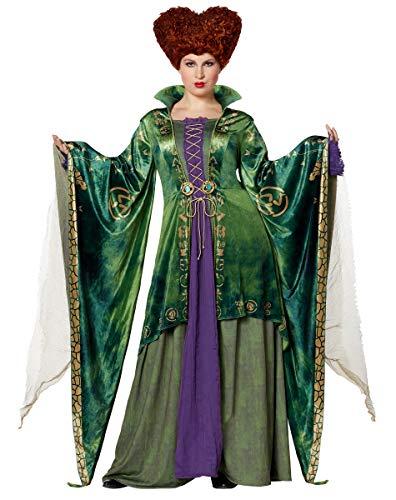 Adult Winifred Sanderson Deluxe Hocus Pocus Costume