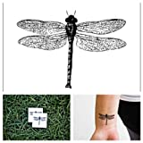 Tattify Dragonfly Temporary Tattoo - Flying Bug (Set of 2) - Other Styles Available and Fashionable Temporary Tattoos - Tattoos that are Long Lasting and Waterproof