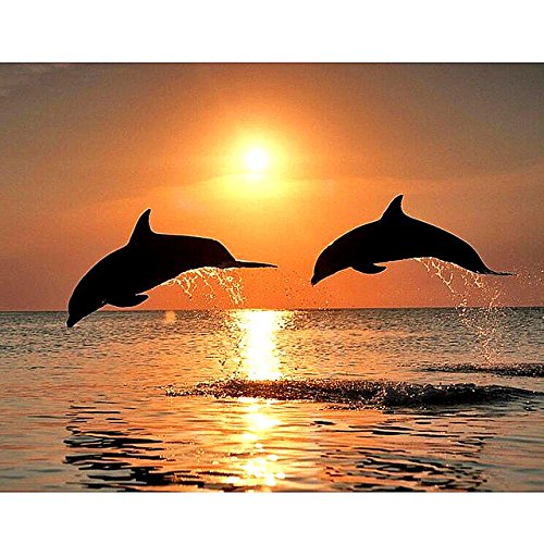 New 5D DIY Diamond Painting Dolphin Embroidery Full Diamond Cross Stitch Sunset Water Dolphin Rhinestone Mosaic ()