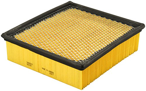 FRAM TGA8243 Tough Guard Air Filter
