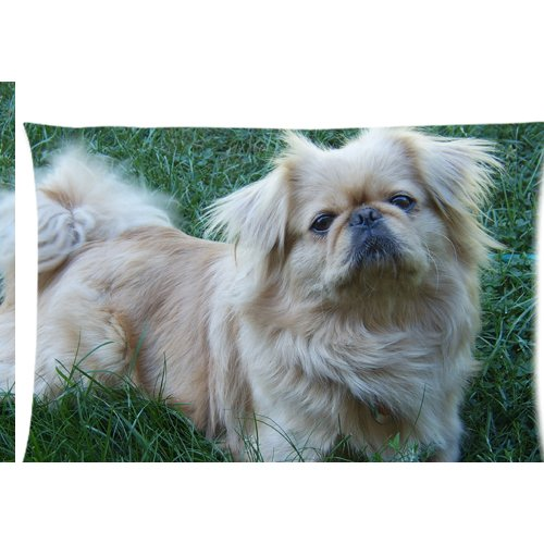 Pekingese Pillow - Pekingese in the green field Zippered Pillow Cases Cover 20x30 Inch