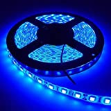 Homes Decor 5 Meter Cuttable LED Strip/Cove Light/Ceiling Light 5050 LED with Driver - Blue Color