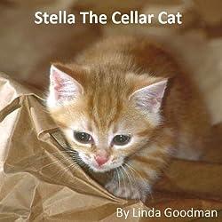 Stella the Cellar Cat